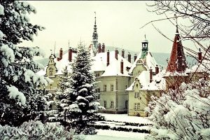 Новогодний тур - Замок Шенборнов, Чинадиево