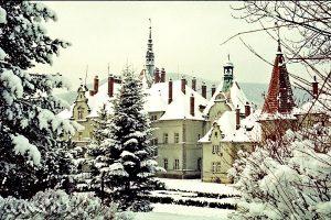 Достопримечательность Замок Шенборнов, Чинадиево
