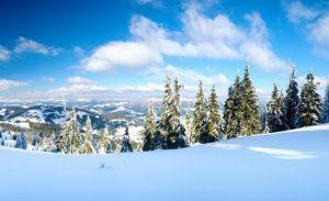 Зимний отдых на Буковеле