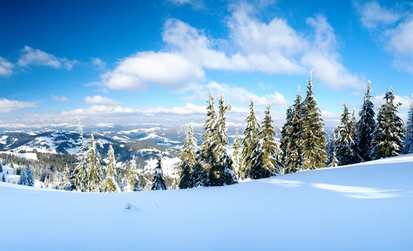 Зимові тури в Карпати