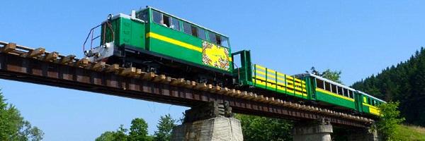 Карпатський трамвай Вигода