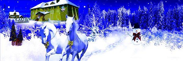 новогодний тур в Закарпатье