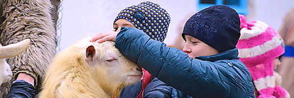 Праздник Вождение козы в Чернигове
