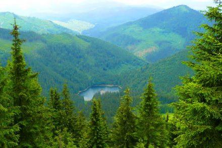 Екскурсія до озера Синевир фото