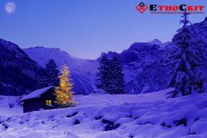 Зимний тур в Карпаты