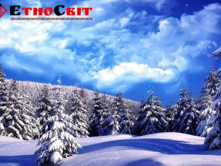 тур в Карпаты зима 2020 / Зимова поїздка в Карпати зі Львова / Зимние туры на Драгобрат