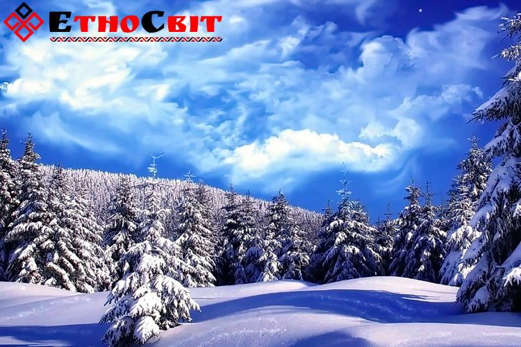 Зимние туры на Драгобрат