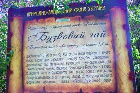 БУЗКОВИЙ ГАЙ У ДИКАНЬЦІ | екскурсія з Києва