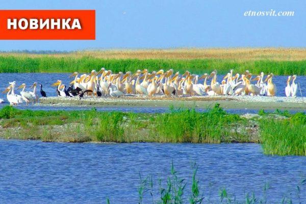 Тур в Вилково из Киева