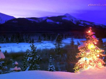 Новий рік в Карпатах / НОВОРІЧНІ ТУРИ В КАРПАТИ | ТУРИ В КАРПАТИ НА НОВИЙ РІК 2020
