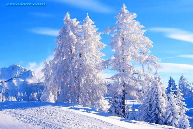 Карпаты зимой / экскурсия по Карпатам
