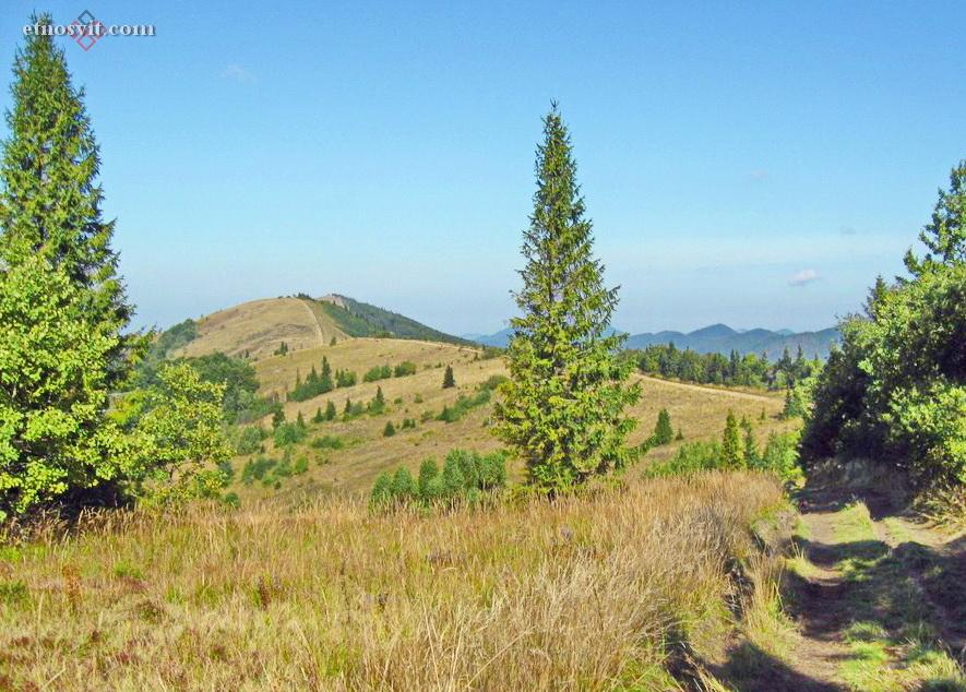 Гора Высокий Верх | Волосянка | Славское, Львовская область