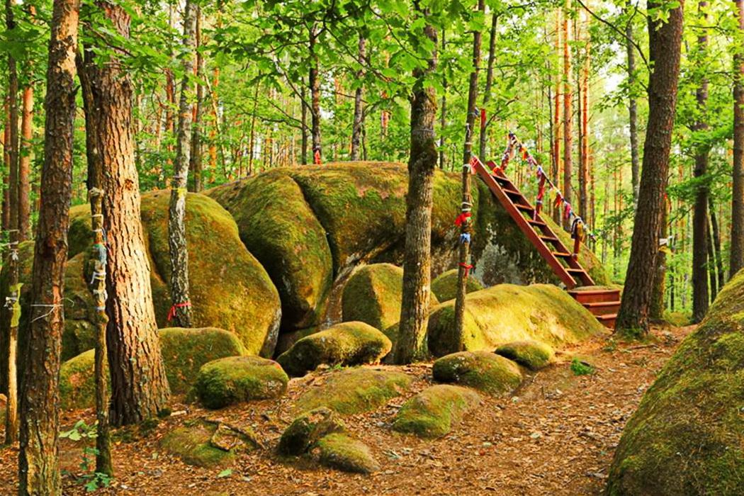 экскурсия в Каменное село из Киева