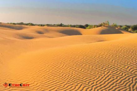 Херсон Олешковские пески / Путешествие по Херсонщине / подорож по Херсонщині