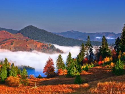 Буковина туризм / Осень в Карпатах