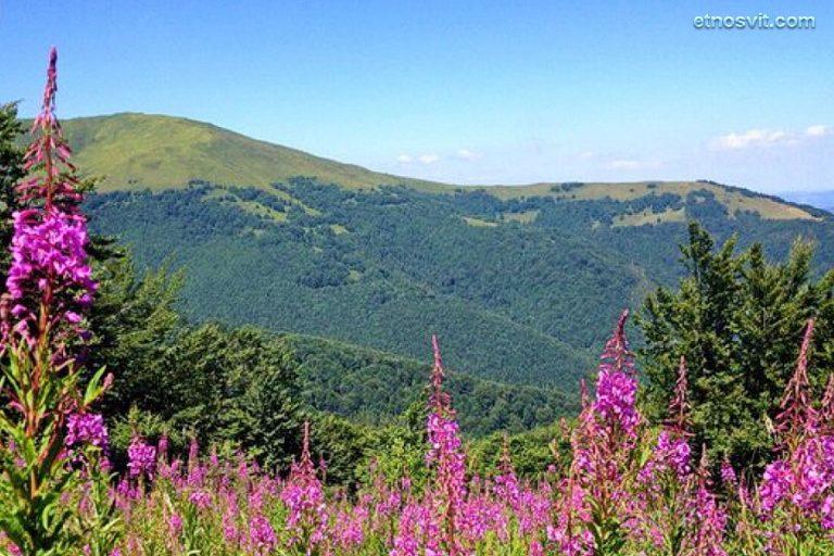 Гора Гымба (Гемба)   Закарпатье