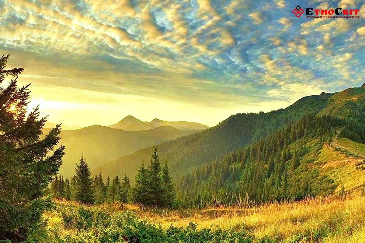Літній тур на Драгобрат з Києва / Карпати фото Карпати / Літні Карпати