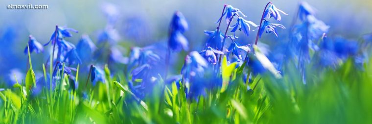 Сезон Весна