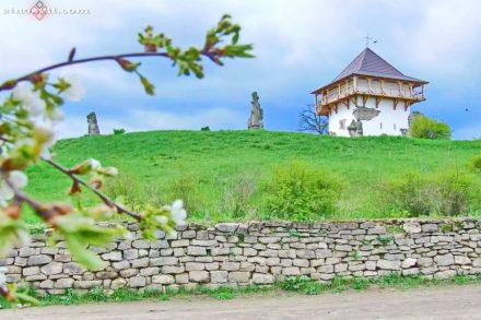 Историко-культурный заповедник «Буша», Винницкая область